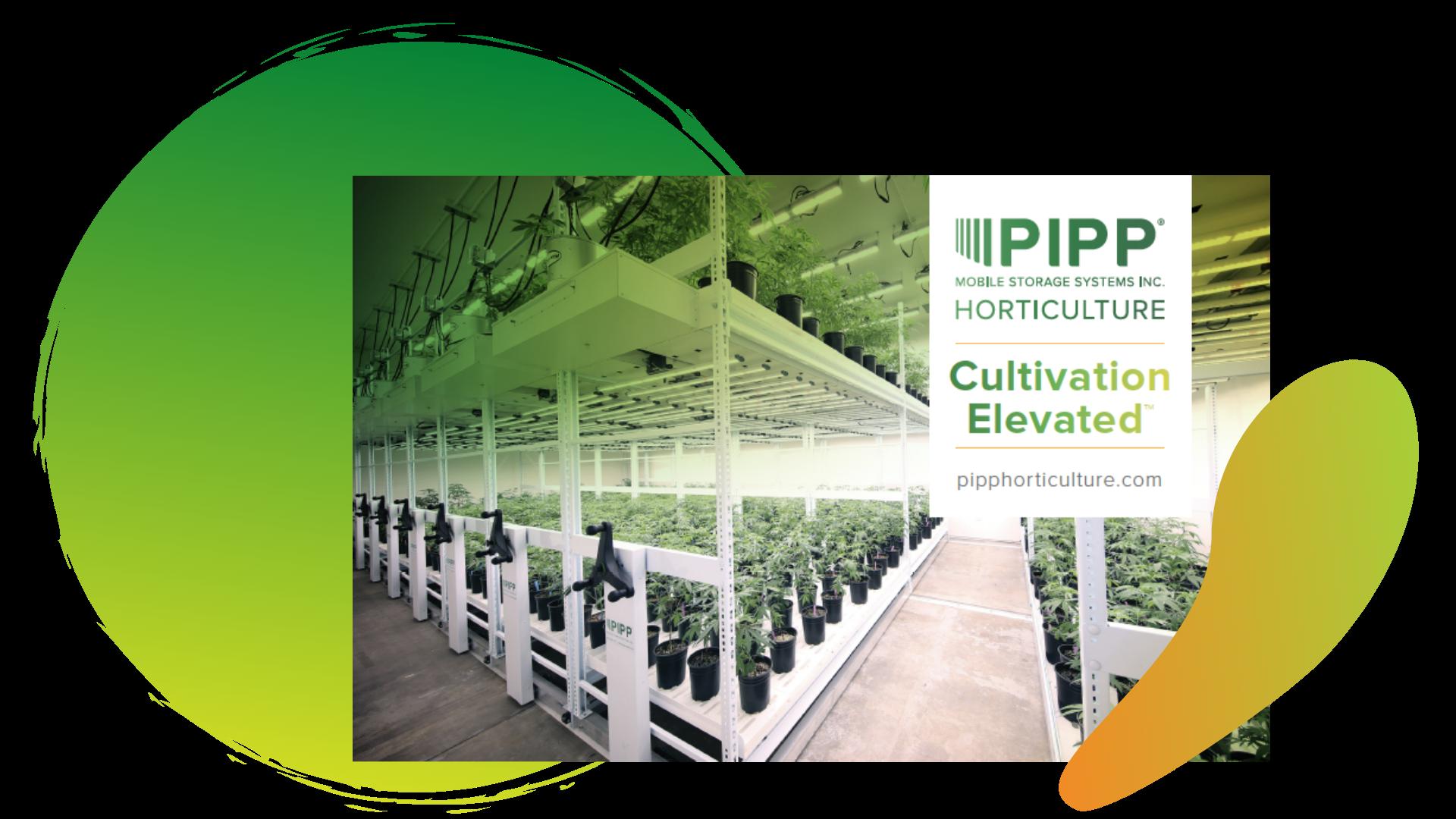 Pipp Horticulture Brochure